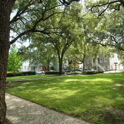 Savannah Ga Official Website
