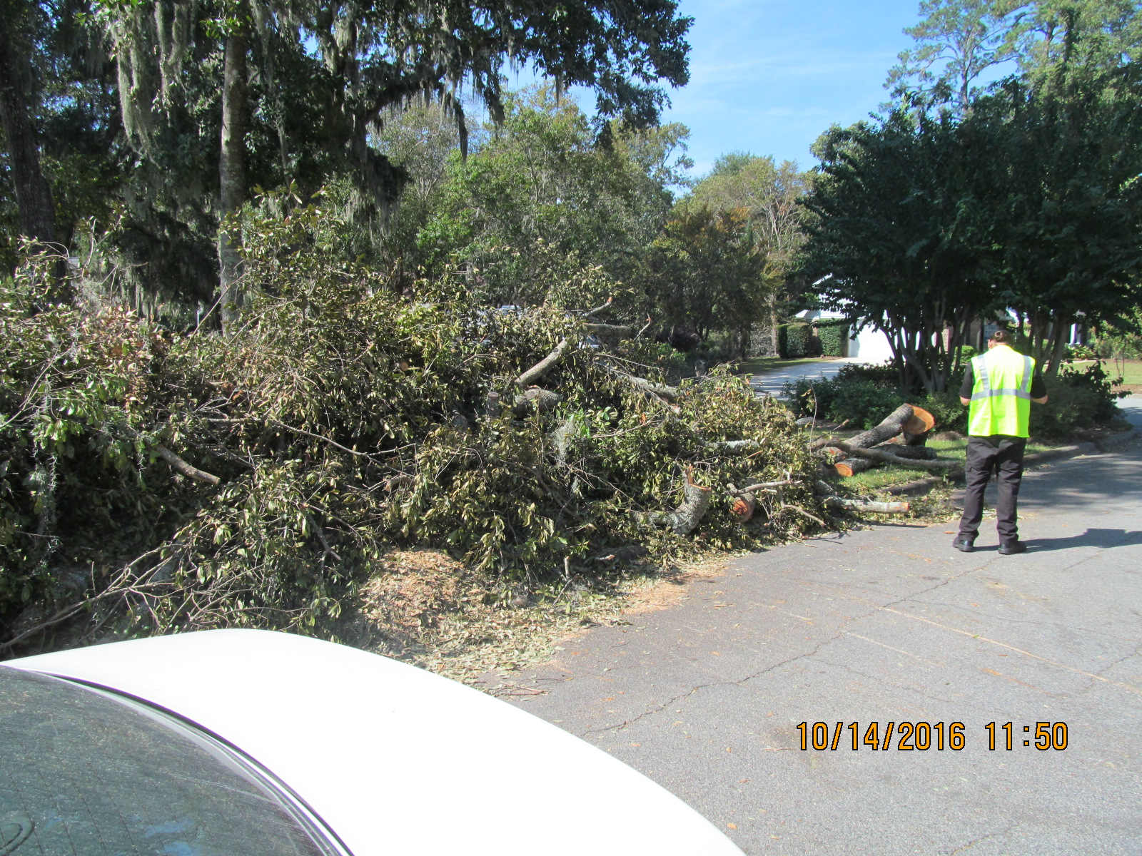 City of Savannah at work (1)
