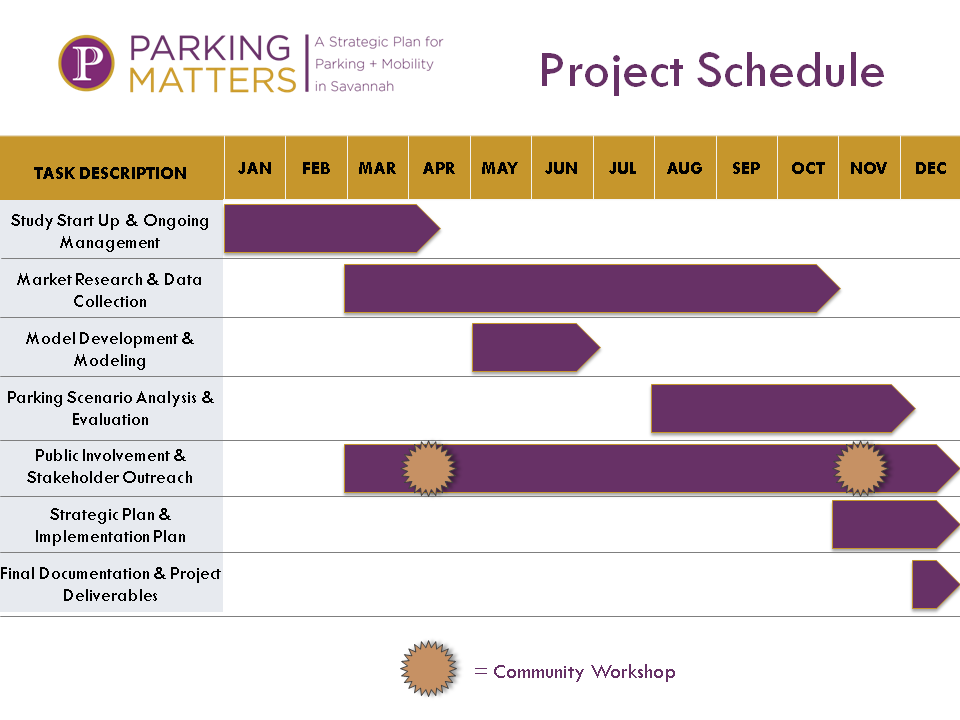 Public Project Schedule v1.jpg.png